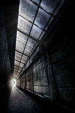 Near death experience.hallway