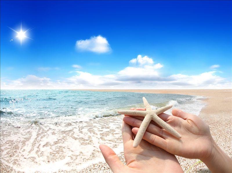 Beach_starfish