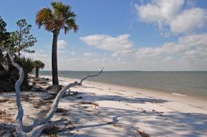 Dolphin-Head-Beach